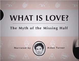 The Myth of the Missing Half